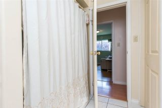 Photo 19: 2831 ASH Street in Abbotsford: Abbotsford East House for sale : MLS®# R2586234