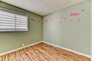 Photo 17: 262 Martinwood Place NE in Calgary: Martindale Detached for sale : MLS®# A1123392