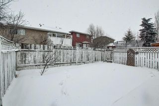 Photo 44: 14 Everglade Drive SE: Airdrie Semi Detached for sale : MLS®# A1067216