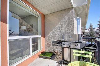Photo 26: 302 69 Springborough Court SW in Calgary: Springbank Hill Apartment for sale : MLS®# A1085302