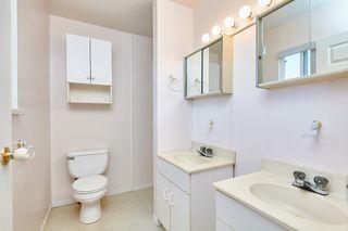 Photo 12: 20365 116 Avenue in Maple Ridge: Southwest Maple Ridge House for sale : MLS®# R2516825