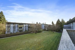 """Photo 16: 239 202 WESTHILL Place in Port Moody: College Park PM Condo for sale in """"Westhill Place"""" : MLS®# R2558066"""