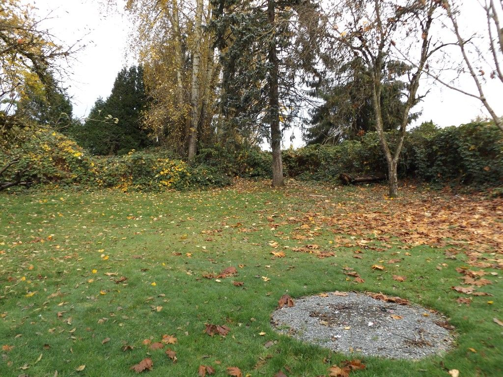 Photo 10: Photos: 33489 George Ferguson Way in Abbotsford: Central Abbotsford House for rent
