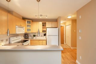"""Photo 11: 227 3122 ST JOHNS Street in Port Moody: Port Moody Centre Condo for sale in """"SONRISA"""" : MLS®# R2620860"""