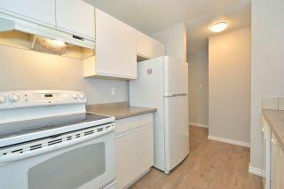 Photo 13: 203 10504 77 Avenue in Edmonton: Zone 15 Condo for sale : MLS®# E4229459