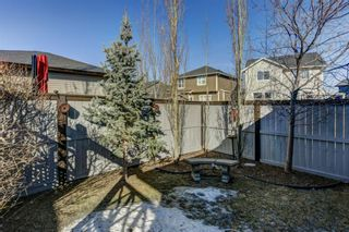 Photo 30: 906 Williamstown Boulevard NW: Airdrie Detached for sale : MLS®# A1081694