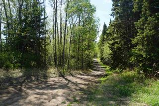 Photo 3: TWP 631 SH 831: Rural Thorhild County Manufactured Home for sale : MLS®# E4246906