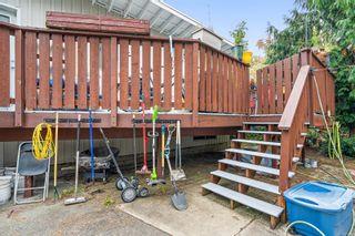 Photo 26: 3162 Alder St in : Vi Mayfair House for sale (Victoria)  : MLS®# 856060