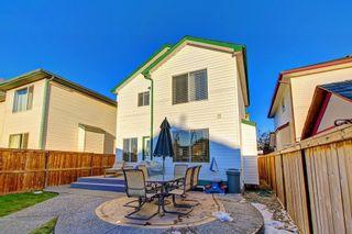 Photo 35: 351 MT APEX Green SE in Calgary: McKenzie Lake Detached for sale : MLS®# C4272409