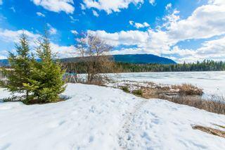 Photo 60: 3197 White Lake Road in Tappen: Little White Lake House for sale (Tappen/Sunnybrae)  : MLS®# 10131005