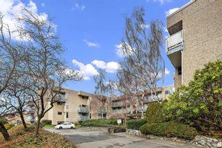 Photo 3: 104 1366 Hillside Ave in : Vi Oaklands Condo for sale (Victoria)  : MLS®# 867040