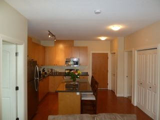 Photo 3: 501 8717 160 Street in Vernazza: Home for sale : MLS®# F1220256