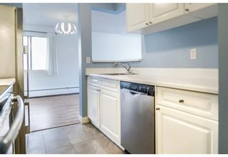 Photo 4: 403 130 25 Avenue SW in Calgary: Mission Apartment for sale : MLS®# A1104864