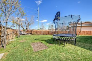 Photo 39: 420 Templeby Place NE in Calgary: Temple Detached for sale : MLS®# A1107183