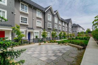 """Photo 34: 49 8476 207A Street in Langley: Willoughby Heights Townhouse for sale in """"YORK By Mosaic"""" : MLS®# R2609087"""