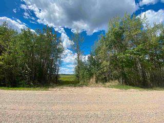 Photo 12: NE 34-49-27-W4 none: Rural Leduc County Rural Land/Vacant Lot for sale : MLS®# E4246771