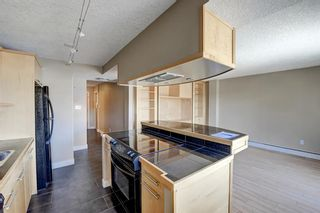 Photo 6: 306 1730 7 Street SW in Calgary: Lower Mount Royal Apartment for sale : MLS®# A1085672