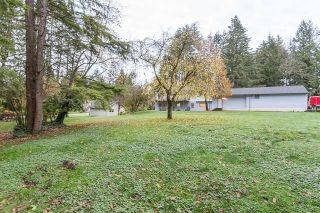 Photo 19: 11447 272 Street in Maple Ridge: Thornhill MR House for sale : MLS®# R2122729
