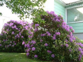 Photo 9: 3574 Acadia Street in Halifax: 3-Halifax North Residential for sale (Halifax-Dartmouth)  : MLS®# 202124988