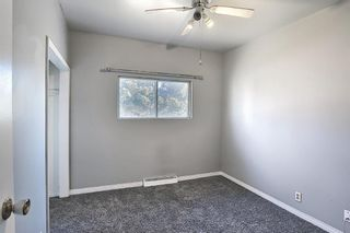Photo 14: 6415 32 Avenue NW in Calgary: Bowness Detached for sale : MLS®# A1099348