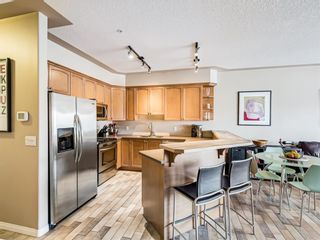 Photo 9: 317 838 19 Avenue SW in Calgary: Lower Mount Royal Apartment for sale : MLS®# A1080864