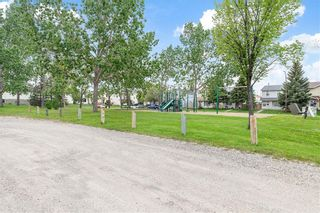 Photo 29: 43 ABERDARE Road NE in Calgary: Abbeydale Detached for sale : MLS®# C4301204