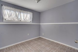 Photo 21: 644 RADCLIFFE Road SE in Calgary: Albert Park/Radisson Heights Detached for sale : MLS®# A1025632