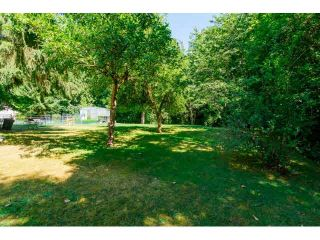 """Photo 8: 14567 64TH Avenue in Surrey: East Newton House for sale in """"SULLIVAN HEIGHTS"""" : MLS®# F1446471"""