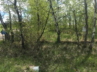 Photo 19: 64 Street W: Rural Foothills County Residential Land for sale : MLS®# A1113746