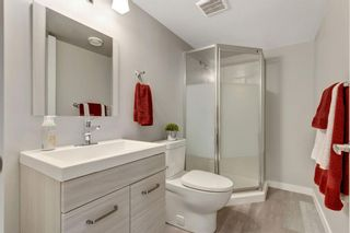 Photo 42: 290 Hillcrest Heights SW: Airdrie Detached for sale : MLS®# A1039457