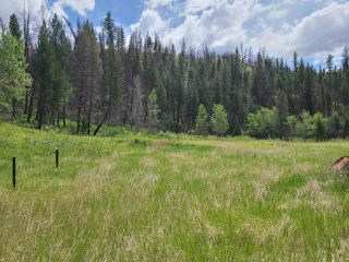 Photo 2: 1284 RENSCH ROAD: Loon Lake Lots/Acreage for sale (South West)  : MLS®# 162651