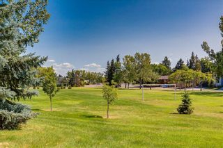 Photo 8: 1081 NORTHMOUNT Drive NW in Calgary: Charleswood Detached for sale : MLS®# C4262307