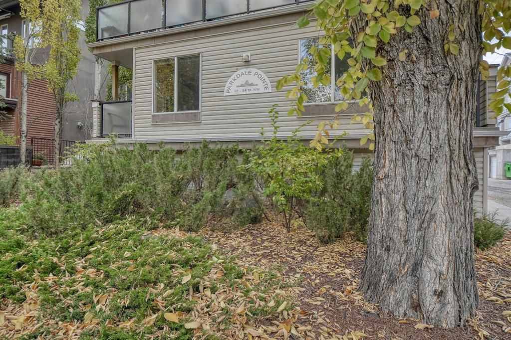 Main Photo: 302 112 34 Street NW in Calgary: Parkdale Apartment for sale : MLS®# A1152841