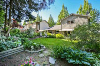 Photo 18: 15894 102A Avenue in Surrey: Guildford House for sale (North Surrey)  : MLS®# R2268207