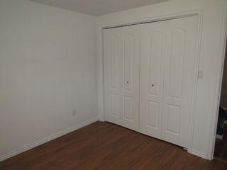 Photo 18: 3613 42A Avenue in Edmonton: Zone 29 House for sale : MLS®# E4253815