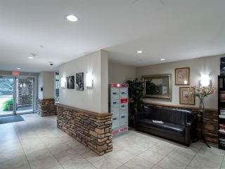 """Photo 26: 523 8288 207A Street in Langley: Willoughby Heights Condo for sale in """"Yorkson Creek Walnut Ridge 2"""" : MLS®# R2546058"""