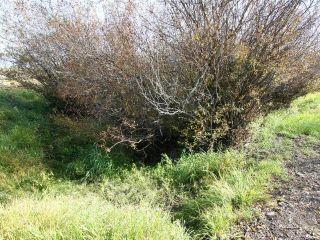 Photo 13:  in Kamloops: Barnhartvale Lots/Acreage for sale : MLS®# 153843
