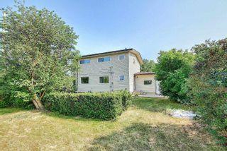 Photo 50: 7516 131A Avenue in Edmonton: Zone 02 House for sale : MLS®# E4254538