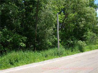 Photo 5: 4128 Fountain Drive in Ramara: Rural Ramara Property for sale : MLS®# X3531612