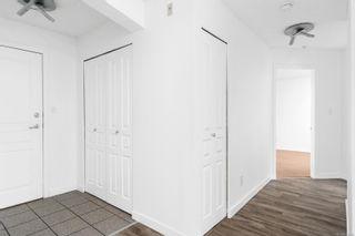 Photo 14: 205 935 Johnson St in : Vi Downtown Condo for sale (Victoria)  : MLS®# 874368