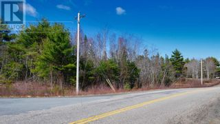 Photo 8: Acreage Grimm Road in Grimms Settlement: Vacant Land for sale : MLS®# 202108229
