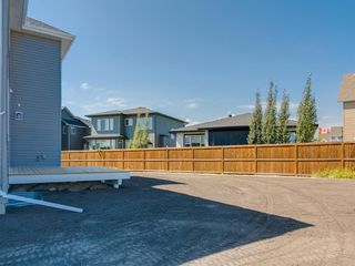 Photo 50: 159 CANOE Crescent SW: Airdrie Detached for sale : MLS®# A1019943