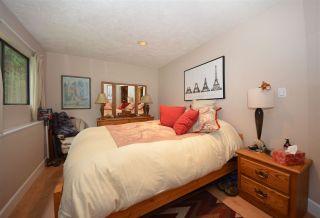 Photo 9: 20830 117 AVENUE in Maple Ridge: Southwest Maple Ridge House for sale : MLS®# R2001082