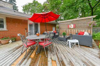 Photo 40: 39 Maple Avenue in Flamborough: House for sale : MLS®# H4063672