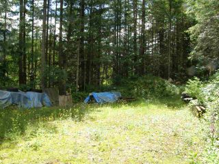 Photo 2: 23685 AMERICAN CREEK Road in Hope: Hope Center Land for sale : MLS®# R2176452