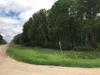 Photo 4: 0 84N Road in Brokenhead Rm: Vacant Land for sale : MLS®# 202001618