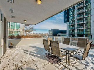 Photo 31: 201 560 6 Avenue SE in Calgary: Downtown East Village Apartment for sale : MLS®# A1063325