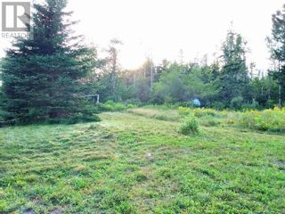 Photo 4: 555 Queens RD in Sackville: Vacant Land for sale : MLS®# M133180