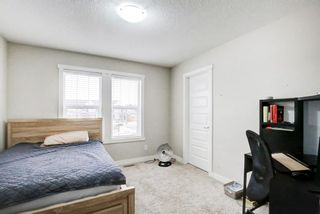 Photo 38: 33 Williamstown Park NW: Airdrie Detached for sale : MLS®# A1056206