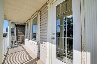 Photo 32: 311 TARALAKE Terrace NE in Calgary: Taradale Detached for sale : MLS®# A1128054
